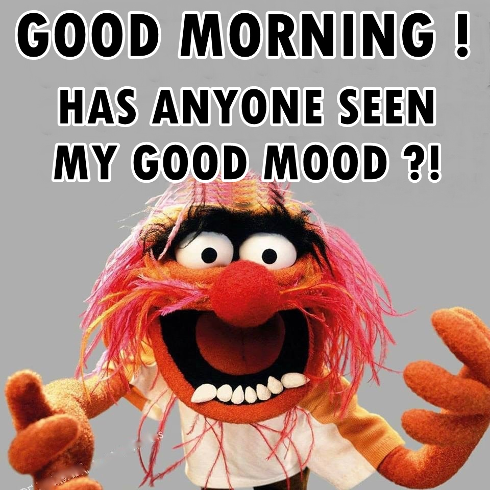 funny good morning